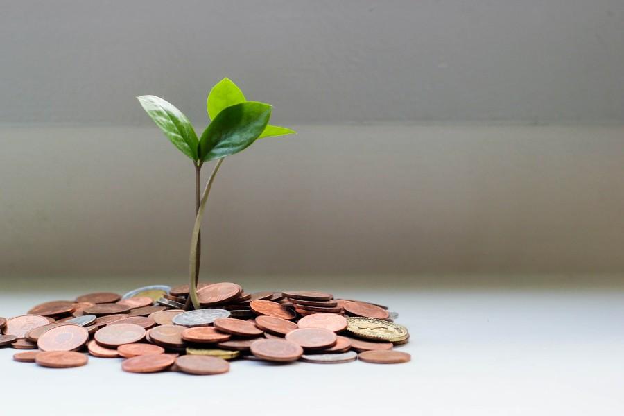 growth with tiktok